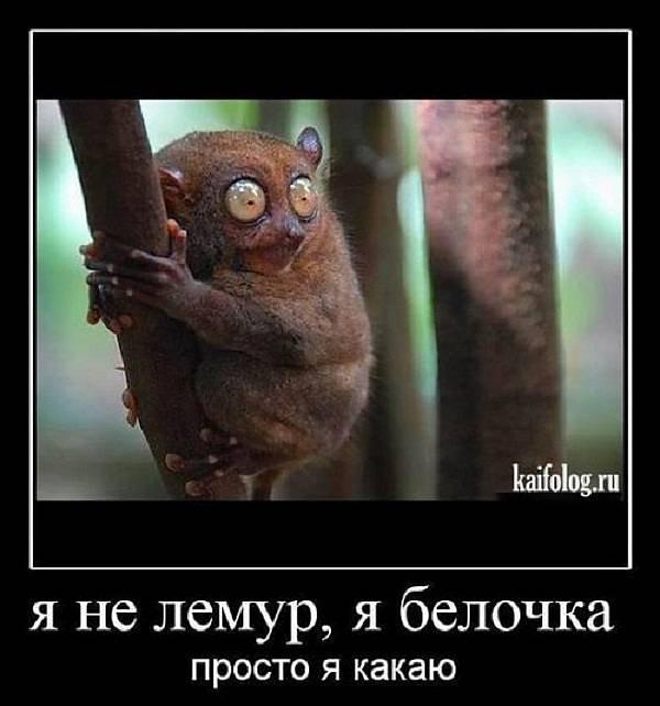 svezhaya-podborka-chastnogo-foto